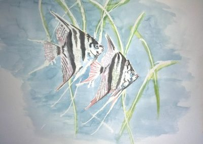 Two Altum Angelfish aquarelle Pterophyllum by Artemie